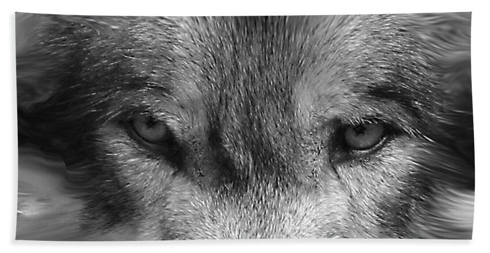 Wolf Canid Canus Lupis Wildlife Grey Gray Timberwolf Animal Mammal Photograph Photograhy Eyes Black White Desaturate Bath Sheet featuring the photograph Eyes Of The Wild by Shari Jardina