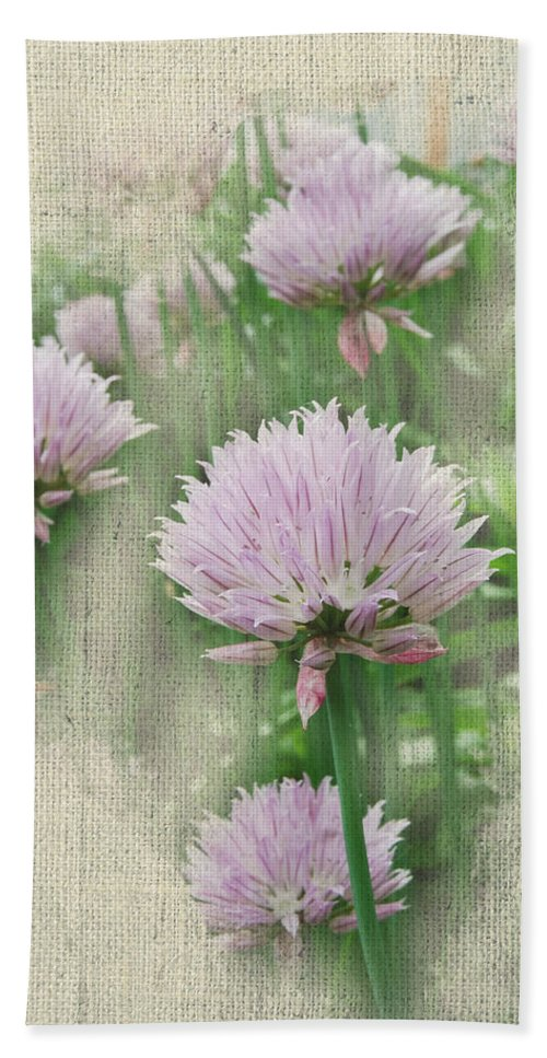 Floral Hand Towel featuring the photograph Faded Floral 11 by Michael Peychich