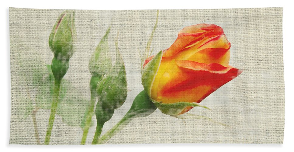 Floral Hand Towel featuring the photograph Faded Floral 9 by Michael Peychich