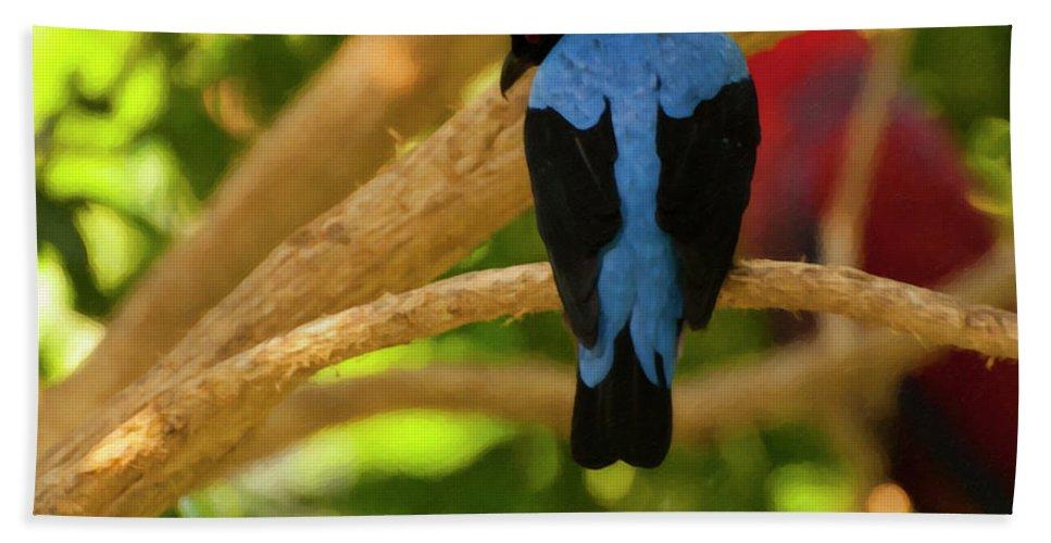 Fairy Bluebird Male Bath Sheet featuring the photograph Fairy Bluebird Male Digital Oil by Chris Flees