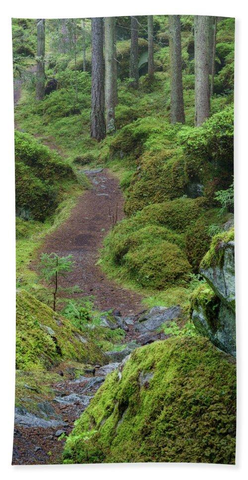 Austria Bath Sheet featuring the photograph Fairytale Trail by Ludwig Riml