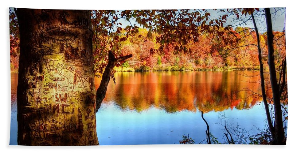 Fall Bath Towel featuring the photograph Fall At Lake by Ronda Ryan