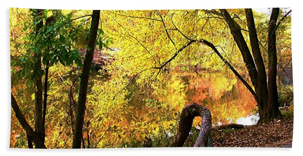 Fall Hand Towel featuring the photograph Fall At Lincoln Lake by Terry Anderson