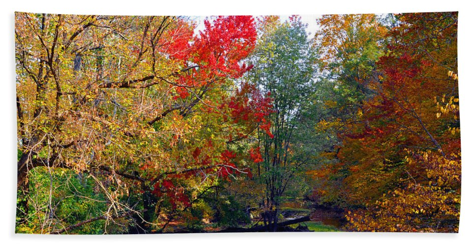 Autumn Reflections Bath Sheet featuring the photograph Fall Creek by Brittany Horton
