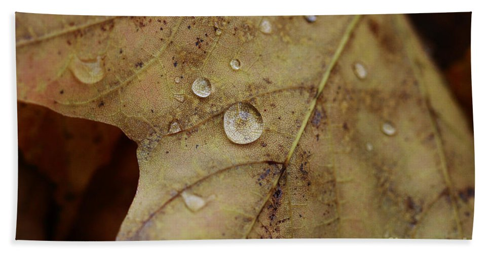 Droplet Hand Towel featuring the photograph Fall Droplets by Deborah Benoit