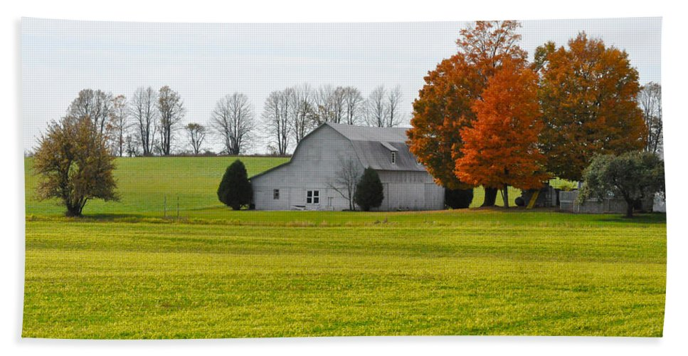 Fall Bath Sheet featuring the photograph Fall Field by Tim Nyberg