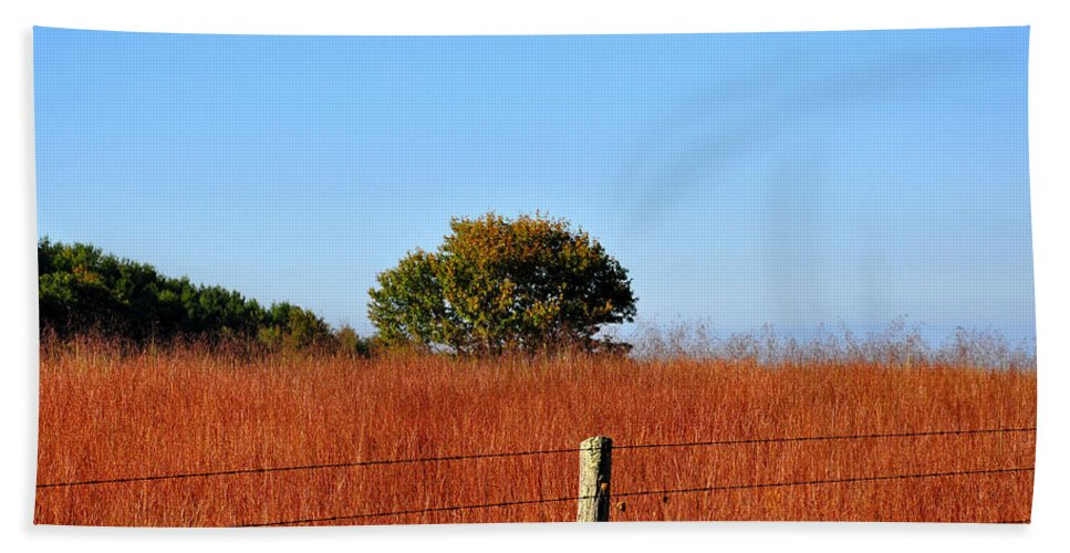 Fall Hand Towel featuring the photograph Fall Field by Todd Hostetter