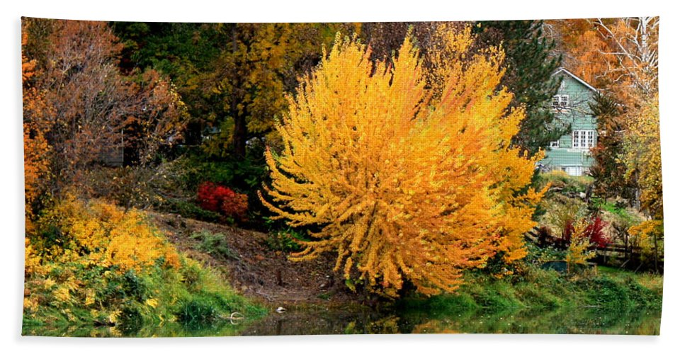 Prosser Hand Towel featuring the photograph Fall Fireworks by Carol Groenen