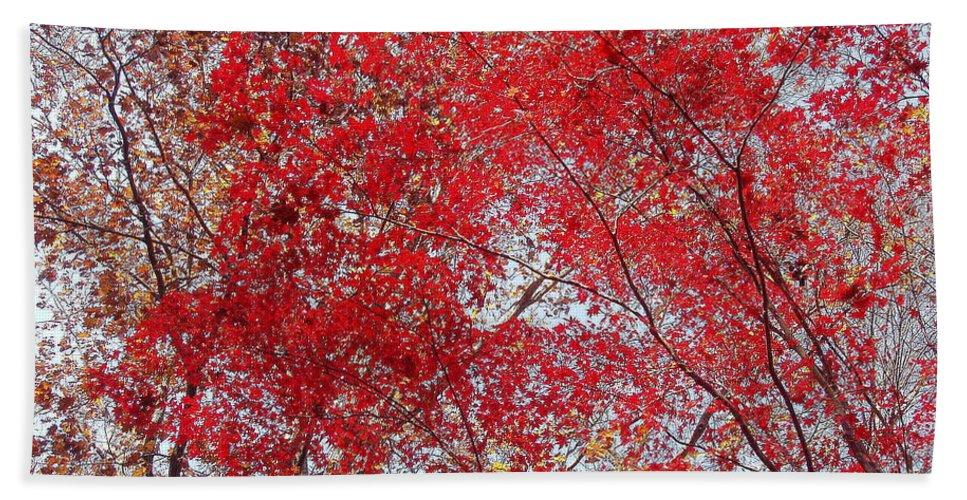 Leaves Bath Sheet featuring the photograph Fall Foilage by Deborah Crew-Johnson