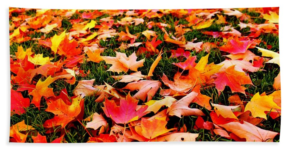 Guilford Bath Sheet featuring the photograph Fall Leaves by Catie Canetti
