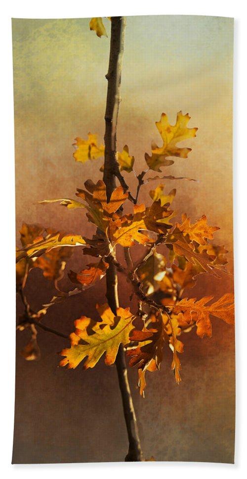 Fall Bath Towel featuring the photograph Fall Oak Leaves by Lynn Bauer