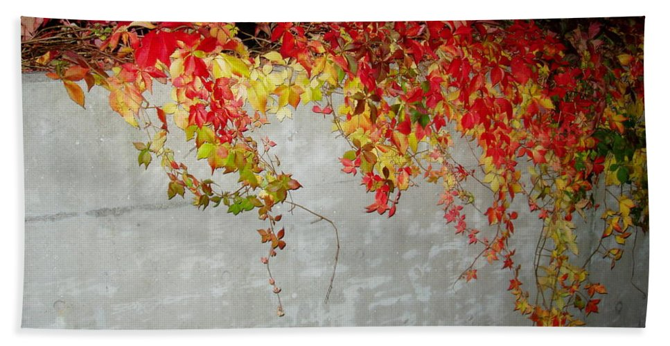 Fall Hand Towel featuring the photograph Fall On The Wall by Deborah Crew-Johnson