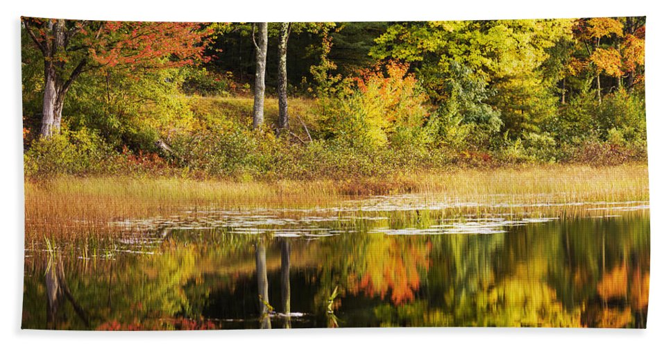Fall Reflection Bath Towel featuring the photograph Fall Reflection by Chad Dutson