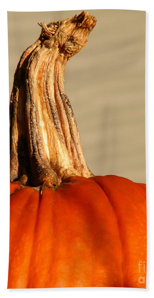 Pumpkin Bath Towel featuring the photograph Fall Rising by Amanda Barcon
