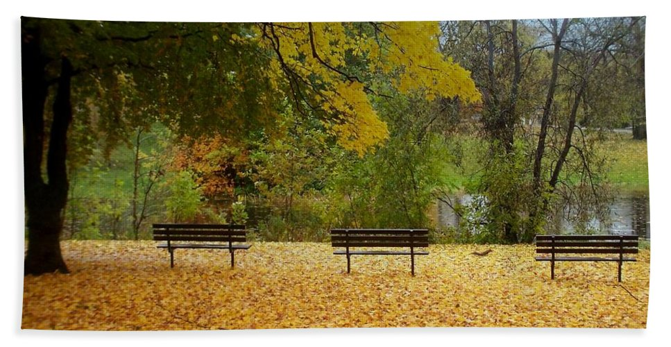Fall Bath Towel featuring the photograph Fall Series 13 by Anita Burgermeister