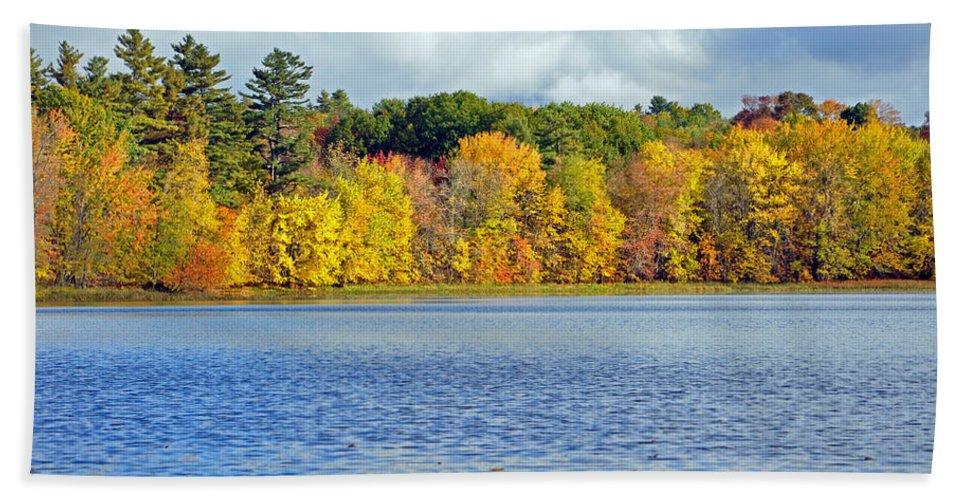 Trees Hand Towel featuring the photograph Fall Splendor by Glenn Gordon