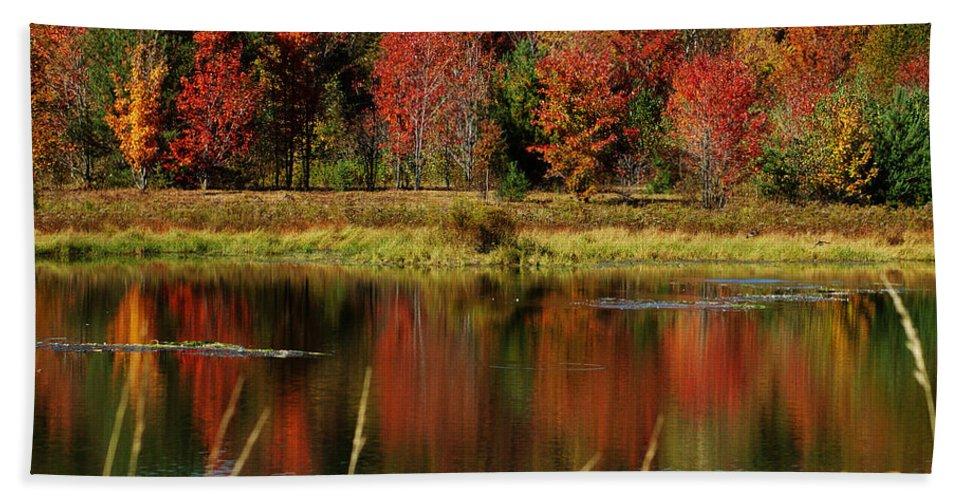 Autumn Bath Towel featuring the photograph Fall Splendor by Linda Murphy
