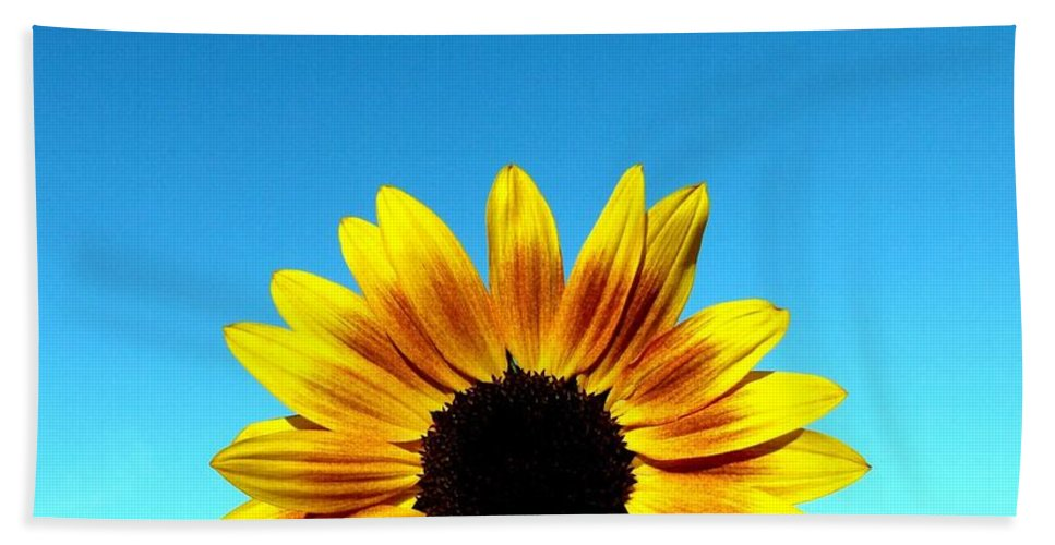 Sunflower Bath Sheet featuring the photograph Fall Sunrise by Will Borden