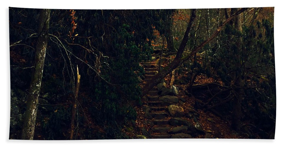 Landscape Hand Towel featuring the photograph Fall Trail by April Patterson
