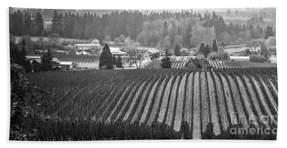 Vineyard Hand Towel featuring the photograph Vineyard In Black And White by Bruce Block