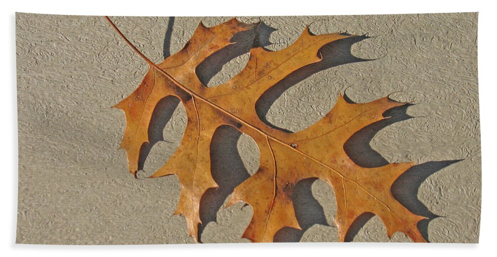 Leaf Bath Sheet featuring the photograph Fallen by Ann Horn