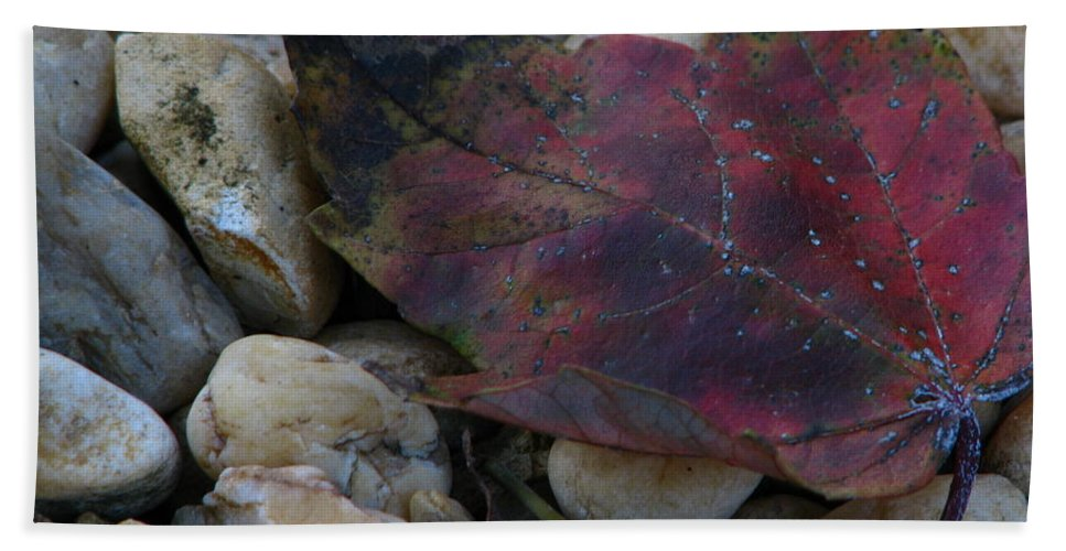 Patzer Hand Towel featuring the photograph Fallen by Greg Patzer