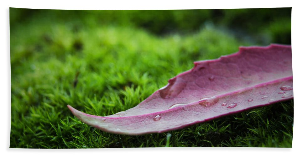 Moss Hand Towel featuring the photograph Fallen by Marnie Patchett
