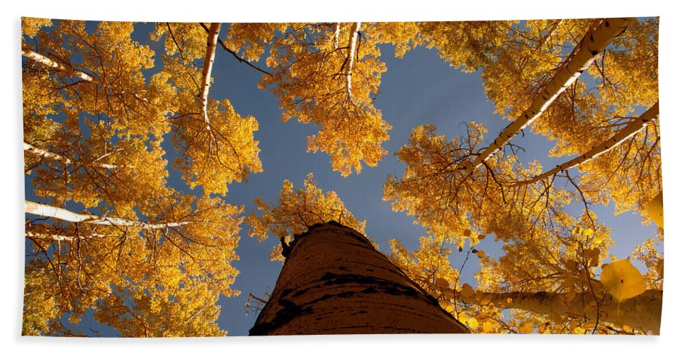 Fall Hand Towel featuring the photograph Falling Sky by David Lee Thompson