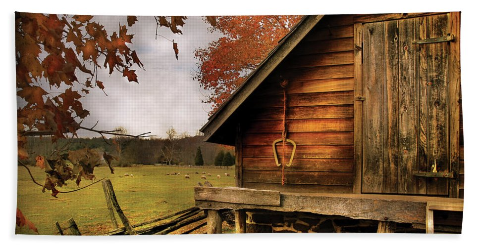 Savad Bath Sheet featuring the photograph Farm - Barn - Shed Out Back by Mike Savad