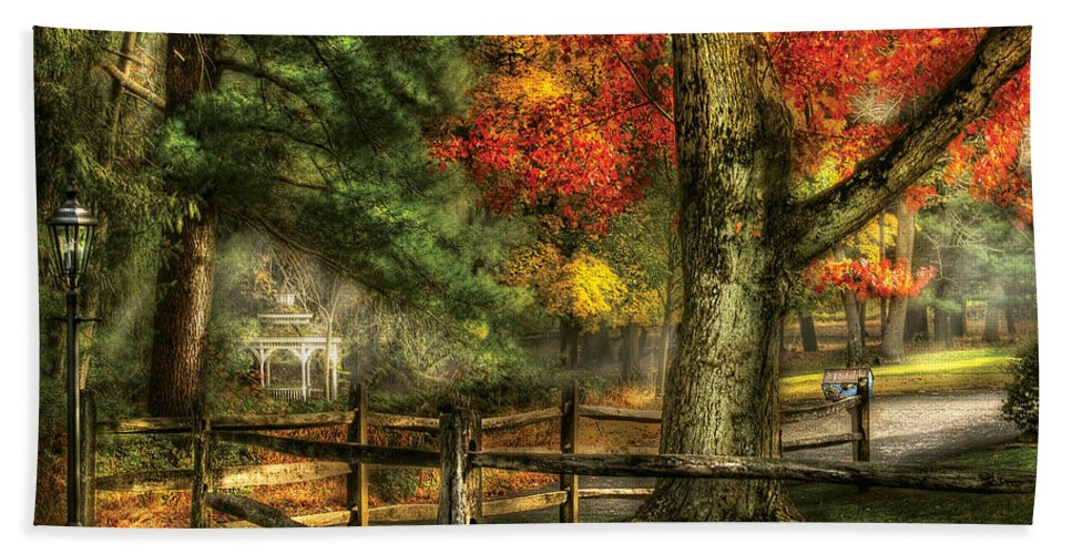 Savad Bath Sheet featuring the photograph Farm - Fence - On A Country Road by Mike Savad