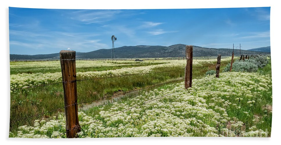 Farm Bath Sheet featuring the photograph Farmland Scenery by Dianne Phelps