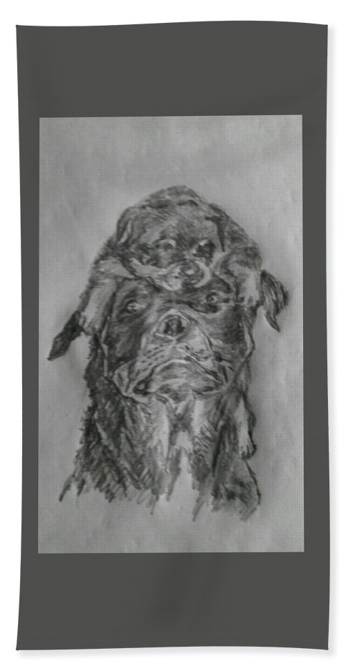 Dog Father Puppy Play Bath Sheet featuring the drawing Father And Puppy by Paul Gibbins