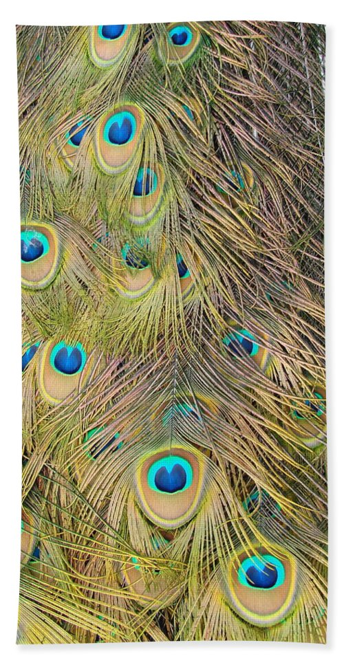 Peacock Bath Sheet featuring the photograph Feather Finesse by Margaret Bobb