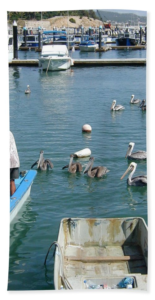 Bird Hand Towel featuring the photograph Feeding Time by Rich Bodane