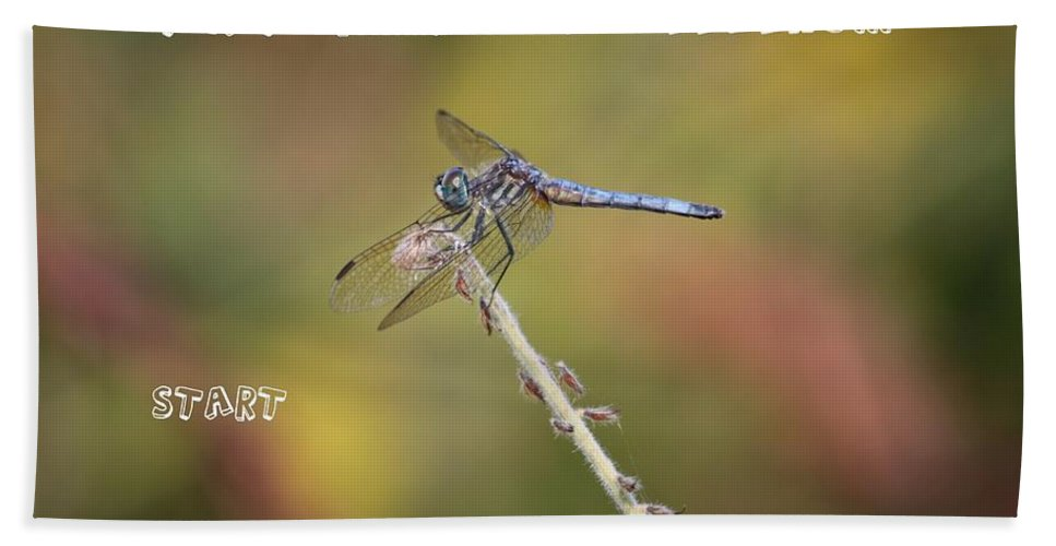 Dragonfly Art Bath Sheet featuring the photograph Feel Young Again by Carol Groenen