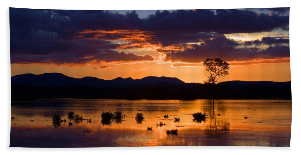 Color Hand Towel featuring the photograph Fern Ridge Sunset by Randall Ingalls