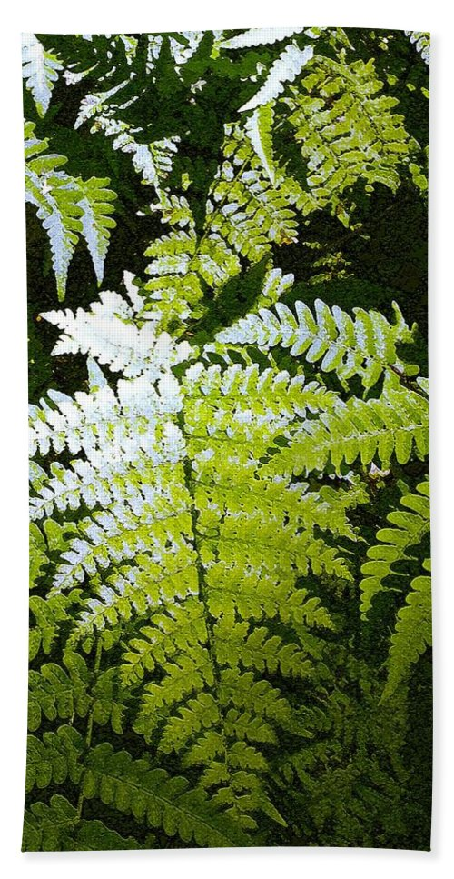 Ferns Bath Towel featuring the photograph Ferns by Nelson Strong