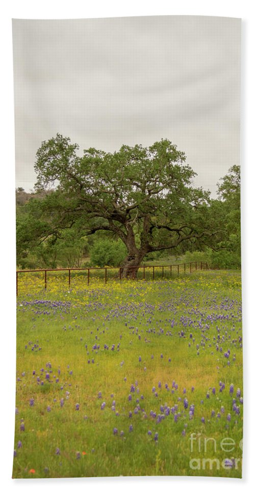 Cutts Nature Photography Bath Sheet featuring the photograph Field Of Flowers by David Cutts
