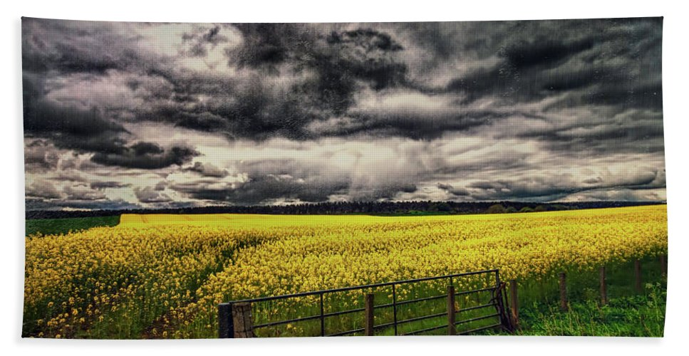 Grunge Hand Towel featuring the photograph Field Of Yellow Flowers by Sharon Ann Sanowar
