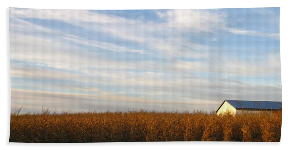 Country Hand Towel featuring the photograph Fields Of Gold by Rhonda Barrett