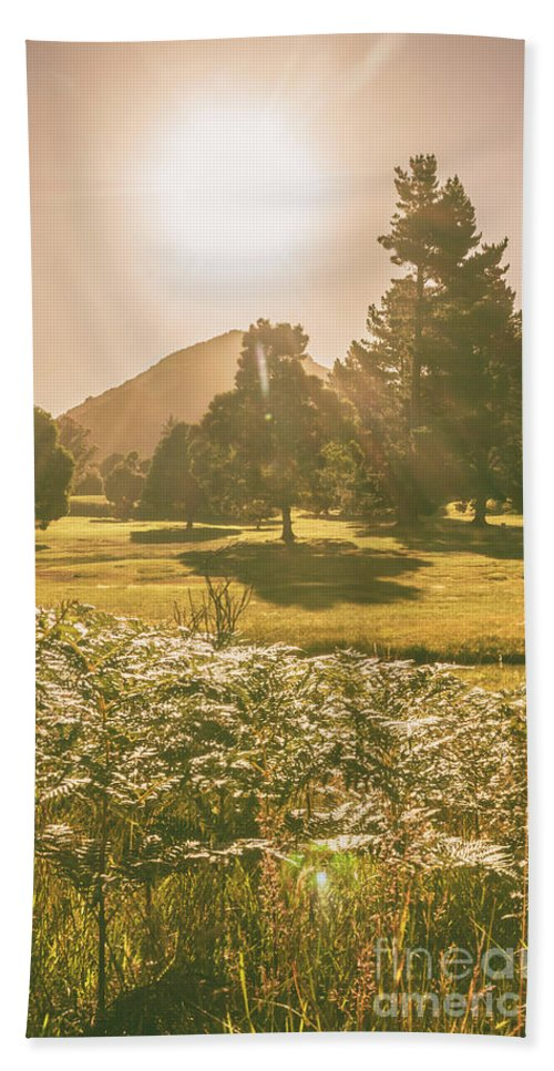 Rustic Hand Towel featuring the photograph Fields Of Springtime by Jorgo Photography - Wall Art Gallery