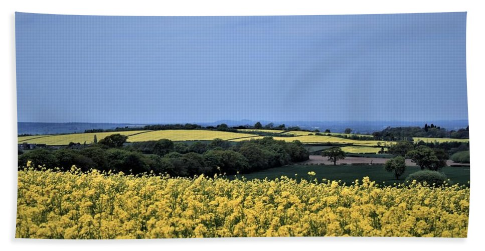 Summer Hand Towel featuring the photograph Fields Of Summer by Dave Lees