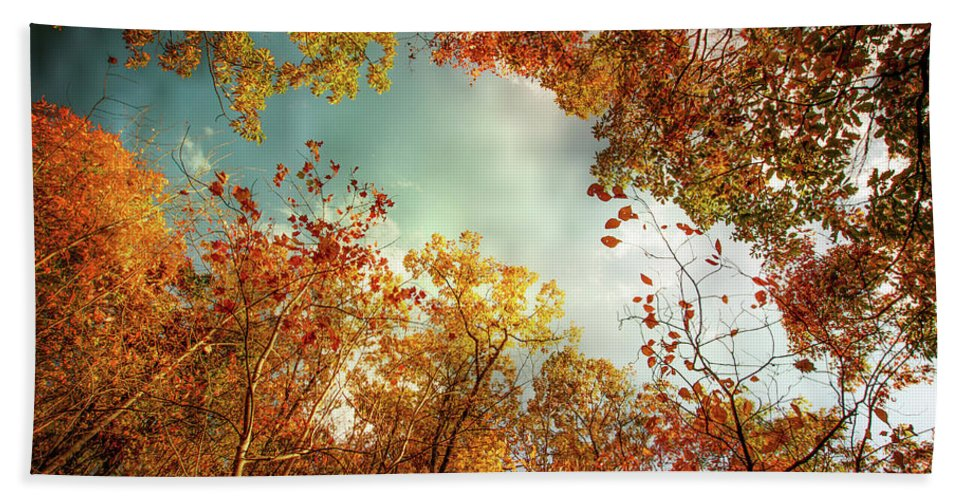 Landscape Bath Sheet featuring the photograph Autumn Fire by Jim Love