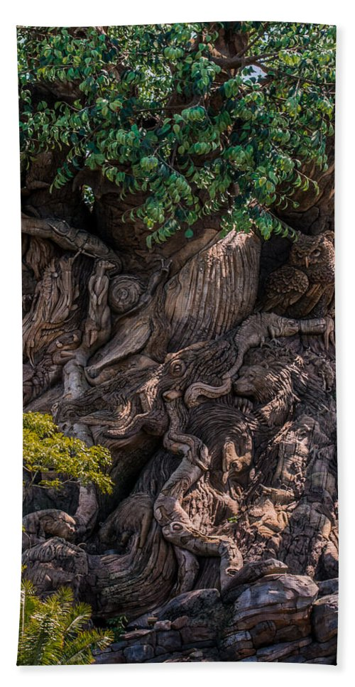 Tree Of Life Hand Towel featuring the photograph Find Animals... by Zina Stromberg