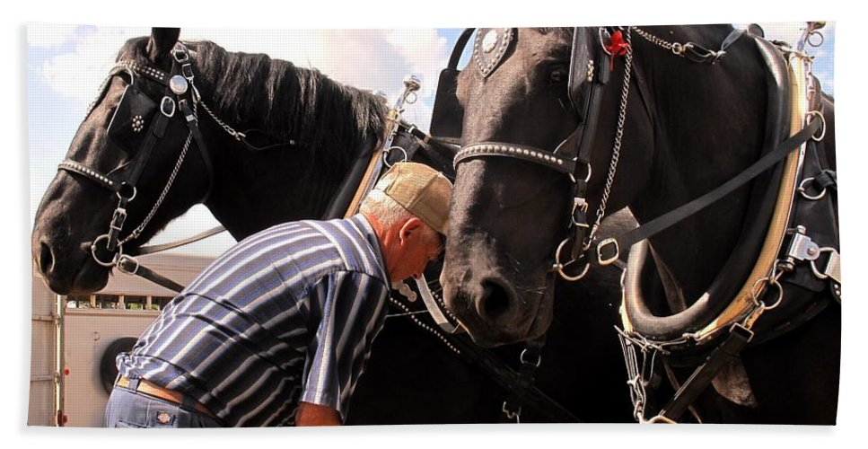Horses Hand Towel featuring the photograph Fine Tuning by Ian MacDonald
