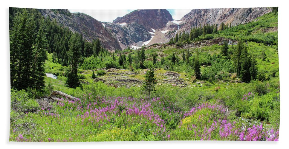Fireweed Hand Towel featuring the photograph Fireweed Frenzy by Jennifer McMahon