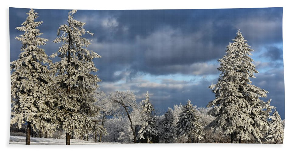Snow Hand Towel featuring the photograph First Snow Of The Year by Lois Bryan