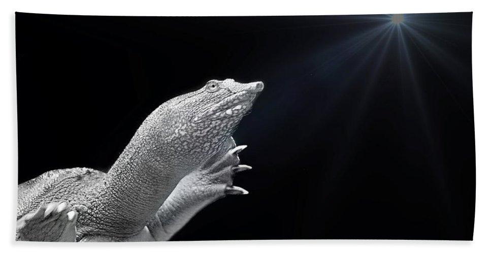 Swim Bath Sheet featuring the photograph Fish 33 by Ben Yassa