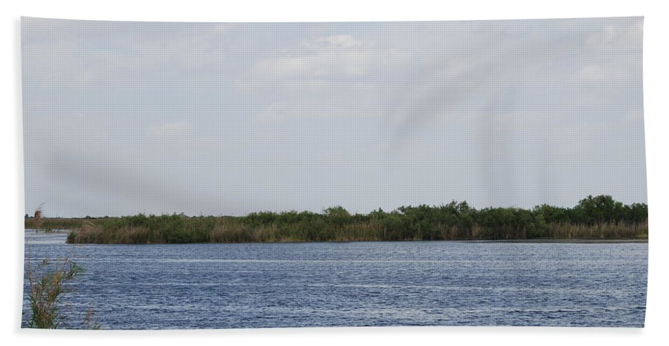 Water Bath Towel featuring the photograph Fla Everglades by Rob Hans