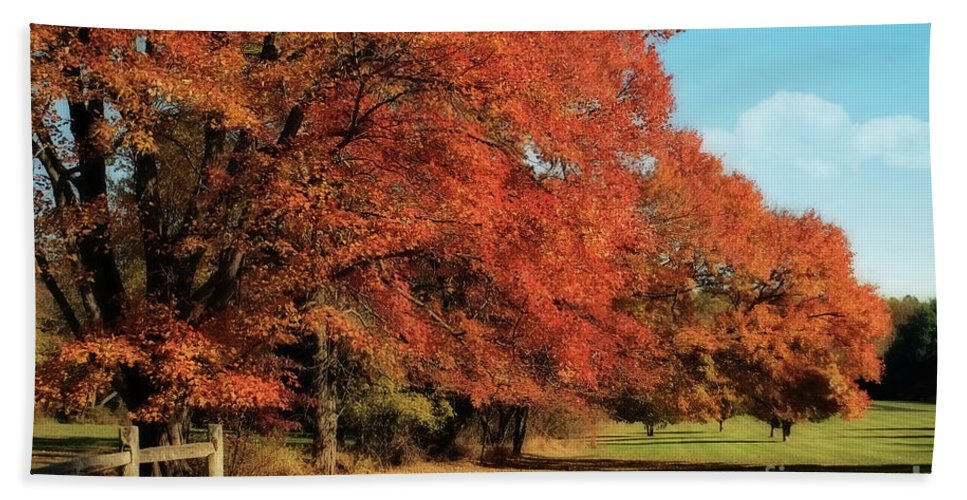 Autumn Bath Sheet featuring the photograph Flame Trees by Lois Bryan